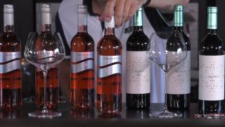 Ondernemerslounge (RTL7) | 1.4.18 | Wijnkoperij Vinyo: De Alberto