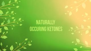 Keto 101 - Naturally Occurring Ketones