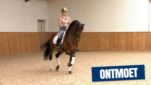KWPN Ontmoet - Franka Loos