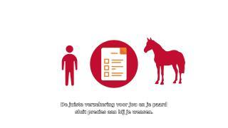 EFO Paardenverzekering