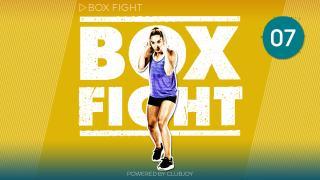 BoxFight 7