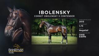 Ibolensky