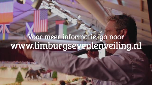 Limburgse Veulenveiling 2019
