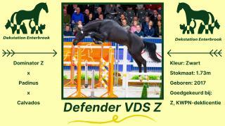 Defender VDS Z