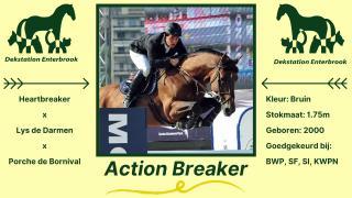 Action Breaker