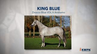 29. King Blue