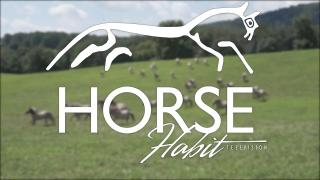 HorseHabit TV S1 E1