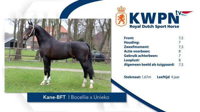 Kane-BFT