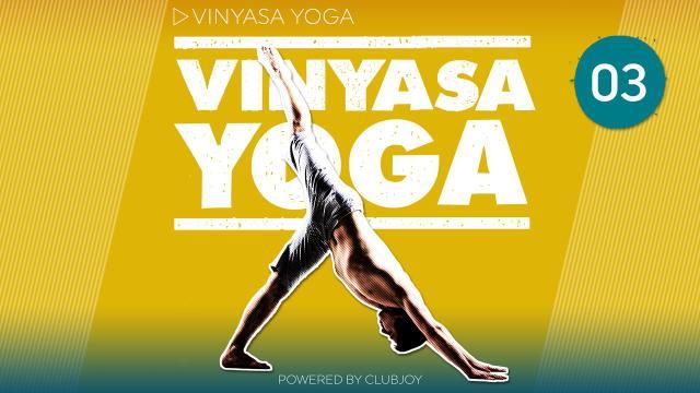 Vinyasa Yoga 3