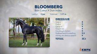20. Bloomberg