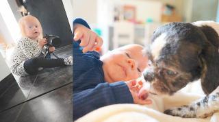 LUXY VLOGT STiEKEM & PiP REAGEERT OP HUiLDENDE BABY  | Bellinga Vlog #2220