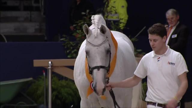 Aftermovie KWPN Stallion Show 2018