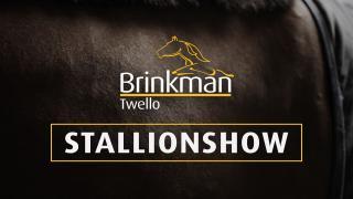 Stal Brinkman - Stallion Show ENG