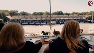 Aftermovie WK Jonge Dressuurpaarden