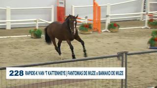 228. Rapide-K Van T' Kattenheye