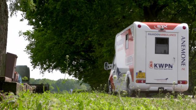 Anemone Horse Trucks legt uit - Hoe vervoer je merrie en veulen