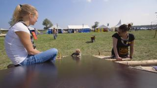 Dieter van Rhijn - Mijn vlam - Eindexamenwerk 2018