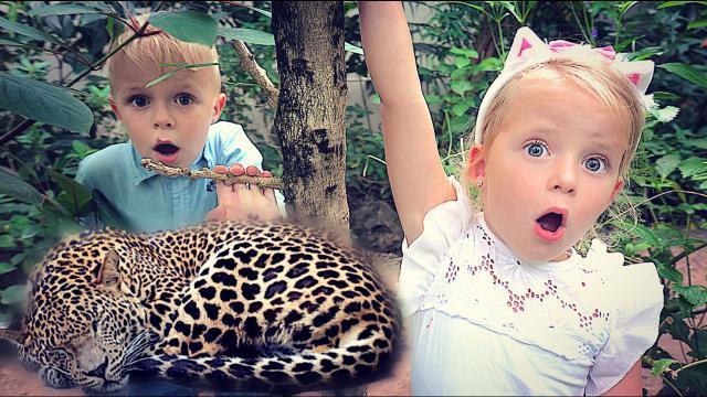 HET GEHEiM VAN DE DiERENTUiN  ( Burgers Zoo) | Bellinga Familie Vloggers #1427