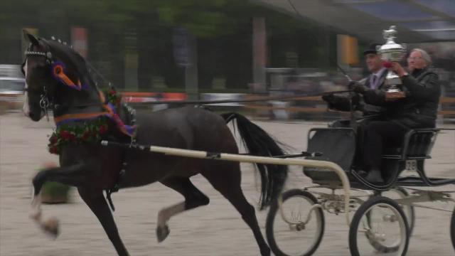 Icanita topsportmerrie van 2019 met rijder Leendert Veerman