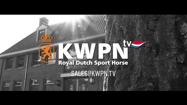 Groei mee met KWPN.tv