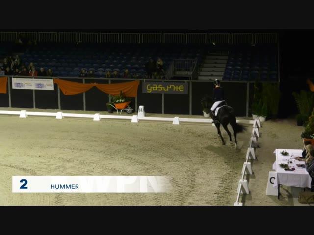 2 - Hummer