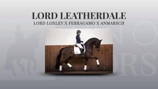 Lord Leatherdale