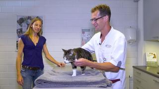 Quality Time op Zondag | 16.4 | Milbemax | Kat Sammie bij de dierenarts