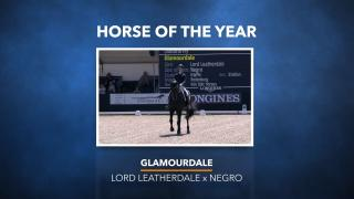 Horse of the Year - Glamourdale