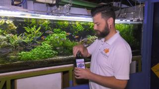 Quality Time op Zondag | 4.5 | Aqua Zoo Leerdam | Aquarium inrichten