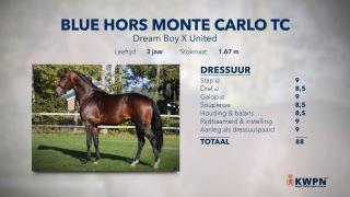 26. Blue Hors Monte Carlo TC
