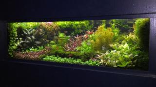 Quality Time op Zondag | 3.5 | Aqua Zoo Leerdam | Introductie