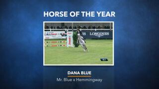 Jumping Horse of the Year - Dana Blue