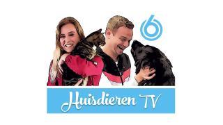 Huisdieren TV | SBS6