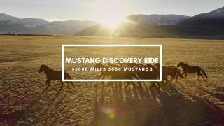 Mustang Discovery Ride