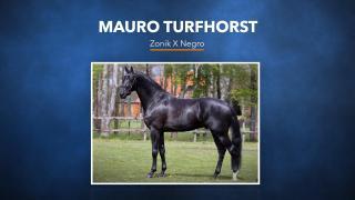 57. Mauro Turfhorst