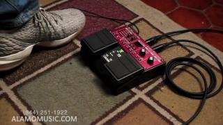 The Basics of Looping Guitar with the Boss RC-30.