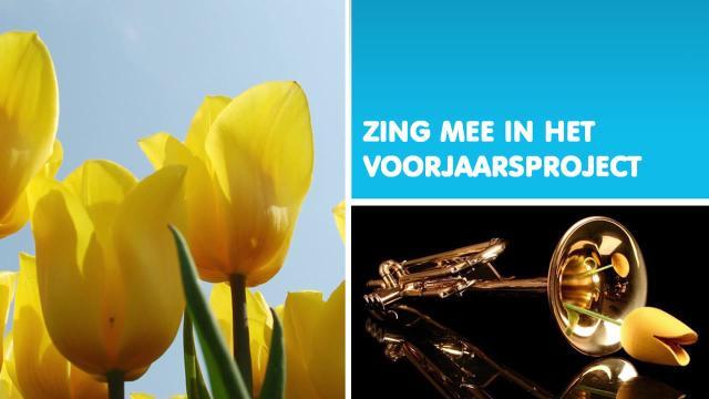 Zing Mee
