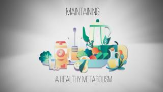 Keto 101 - Maintaining a Healthy Metabolism