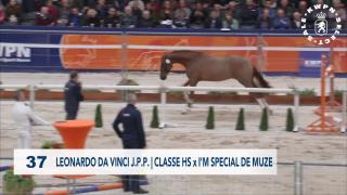 37. LEONARDO DA VINCI J.P.P.