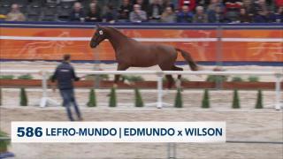 586. LEFRO-MUNDO