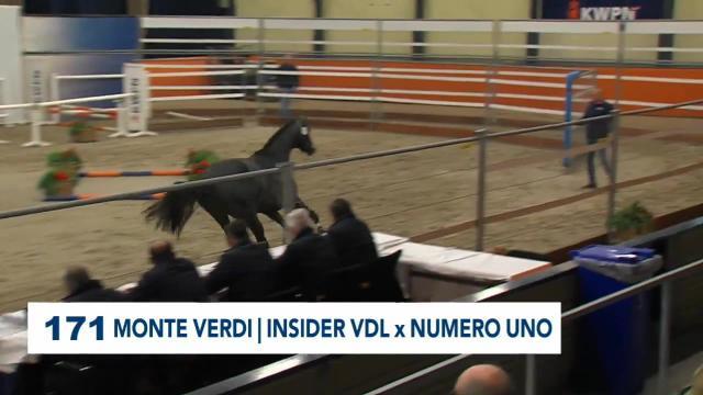 171. Monte Verdi
