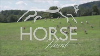 HorseHabit TV