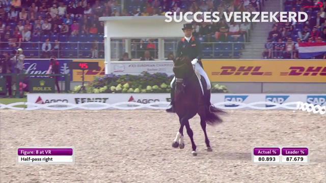 KWPN - Royal Dutch Sport Horse