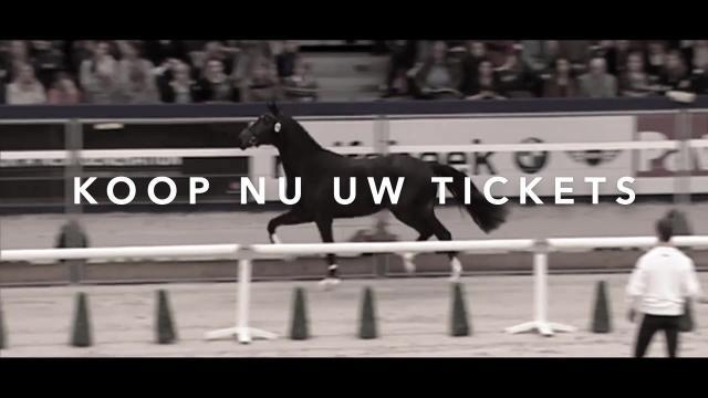 De KWPN Stallion Show staat voor de deur!