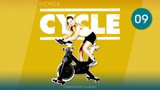Cycle 9