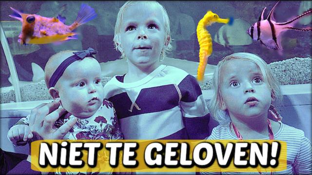 DiT BESTAAT ( toch) ECHT!  ( Sea Life) | Bellinga FamilieVloggers #1144 #DeBellingaS #BellingaTV #FamilieVloggers.nl #FamilyVloggers.com #Youtube #Google