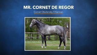 15. Mr Cornet de Regor