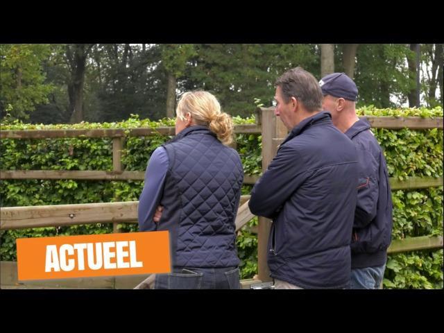 KWPN Actueel - 13 oktober 2017