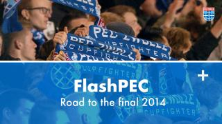 FlashPEC: Road to the final 2014