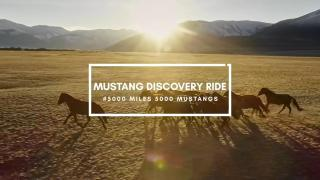 5000 Miles - 5000 Mustangs Episode 3 - Betsy DeGonia Interview